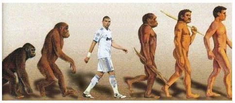 La Evolución del Hombre y Pepe.jpg-707837.jpg