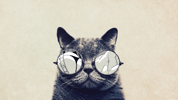 Funny Cat Hipster